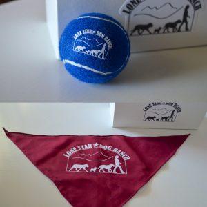 LSDR Ball and Bandana Set